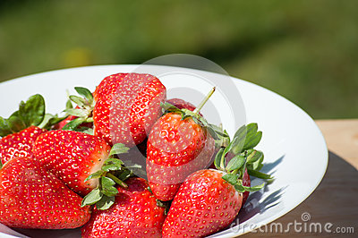 Strawberries - close up