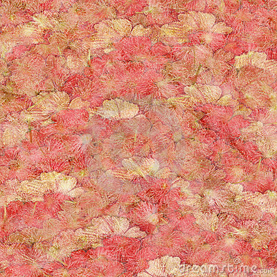 Strawberries and Cream Fluffy Pink  Background