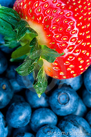 Strawberry And Bluberry Series Stock Image - Image: 10186401