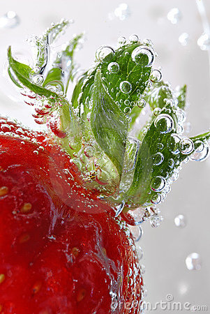 Free Strawberry Detail With Bubbles Stock Photos - 725163