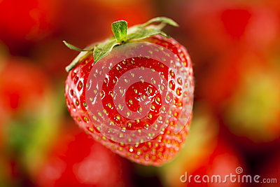 Strawberry in the foreground