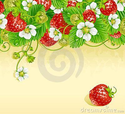 Strawberry frame 3. Red berry and white flower