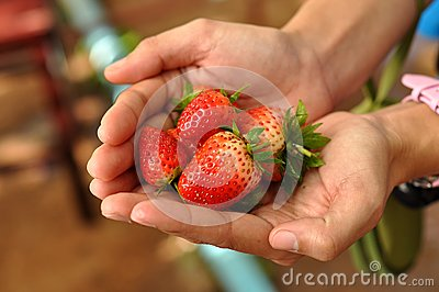 Strawberry on hand