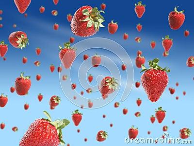 L'Axe des Portes Invisibles - Page 12 Strawberry-rain-5142954