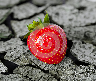 Strawberry on a wooden background