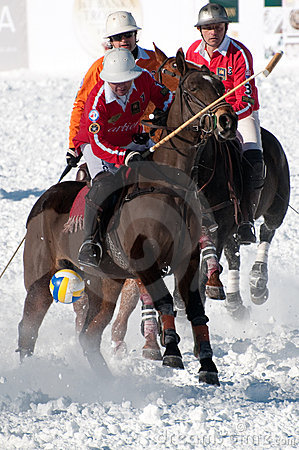 STRBSKE PLESO, SLOVAKIA - FEBRUARY 6: Polo on snow Editorial Stock Photo