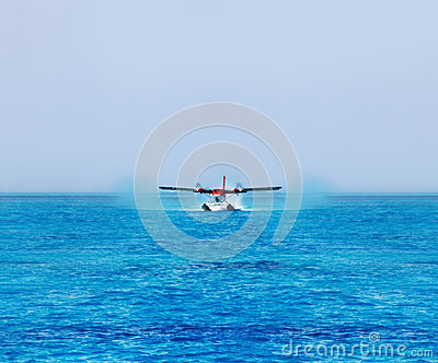 Streaking across a perfect blue ocean