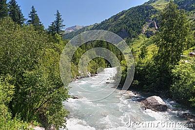 Stream in Ferret valley