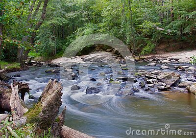 Stream In A Forest With Grey Rocks Free Public Domain Cc0 Image