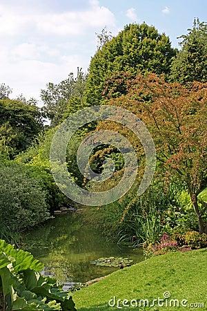 Stream in garden