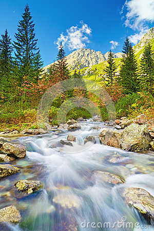 Free Stream High Mountains Tatras Carpathians Landscape Water Royalty Free Stock Images - 54588439