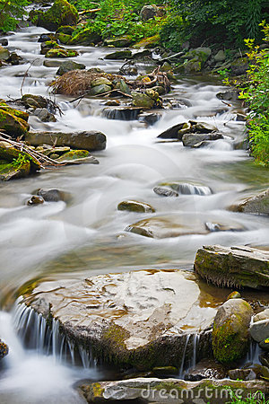 Stream in a mountain forest