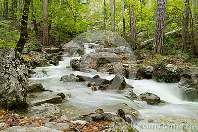 Stream of the mountain river ( long exposure )