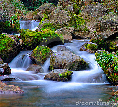 Stream and rocks