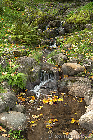 Stream among stones