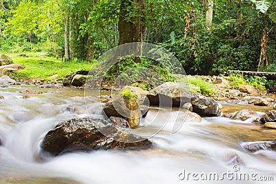 Stream of the waterfall