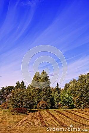 Streaming Clouds in Autum