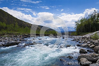 Streaming river