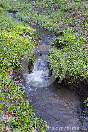 Streams in the grassland
