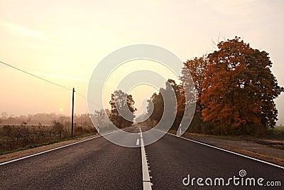 Street in the dawn