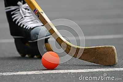 Street hockey #1