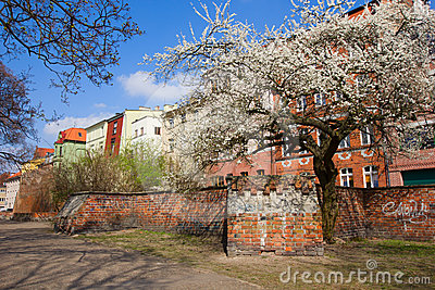 Street inold town of Torun, Poland
