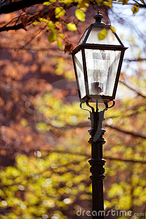 Free Street Lamp Royalty Free Stock Images - 7306169