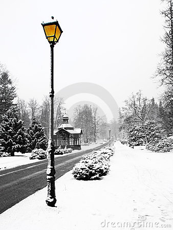 Free Street Lamp In Winter Royalty Free Stock Photography - 10411087