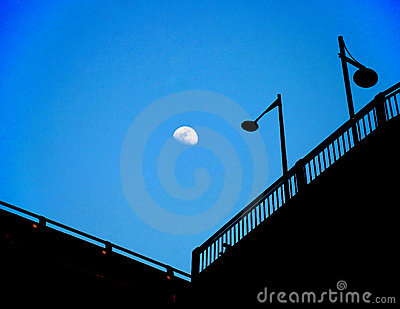 The street lamps in moon night