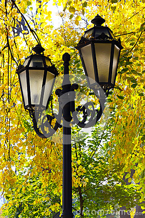 Street lantern on the autumn foliage background