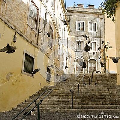Street of Lisbon