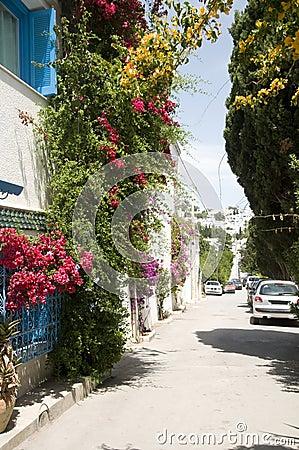 Street scene Sidi Bou Said Tunisia