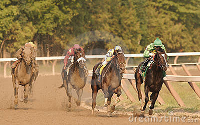 Street Sense Wins the Travers Editorial Image