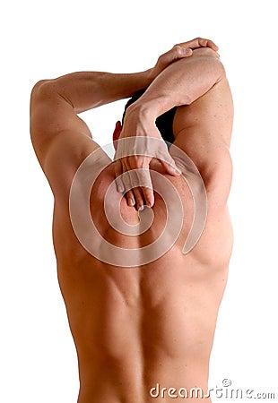 Free Stretching Stock Photo - 1894580