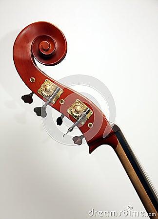 String bass headstock