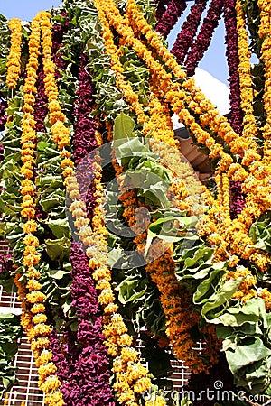Free Strings Of Flowers, Jodhpur, Strings Of Flowers, Rajastan Stock Photos - 563843