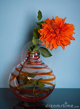 Striped glass vase with red flower on blue