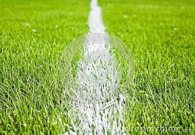 Stripes on grass