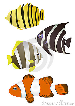 Stripy fishes