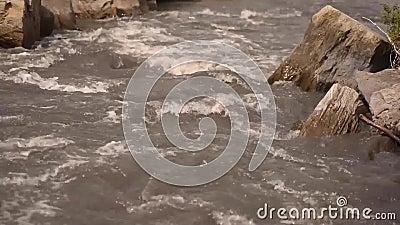 Stromende rivier met keien stock video