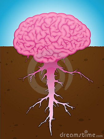 Strong brain thought with roots