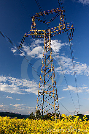 Structure of framework electricity
