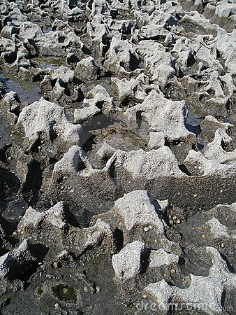 Structure of limestone coast, Doolin, Ireland, EU.