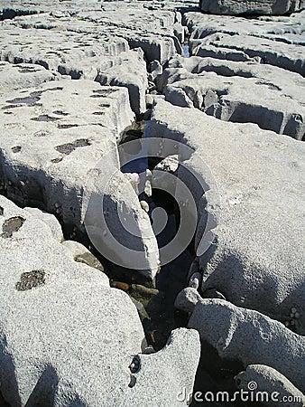 Structure of limestone coast, Doolin, Ireland, EU.