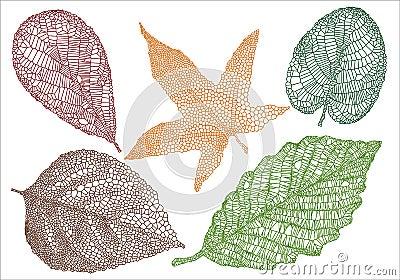 Strukturierte Herbstblätter