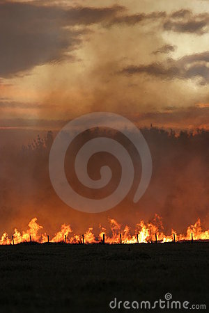 Free Stubble Fire At Dusk Stock Photos - 3804123