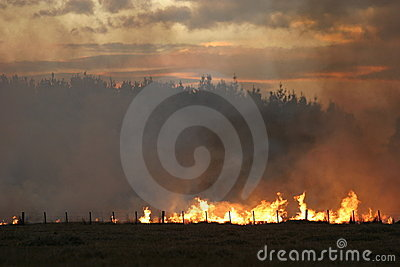 Stubble fire at Dusk