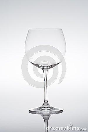 Studio shot of empty vine glass