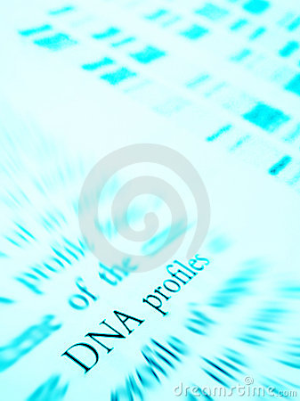 Studying DNA profiles