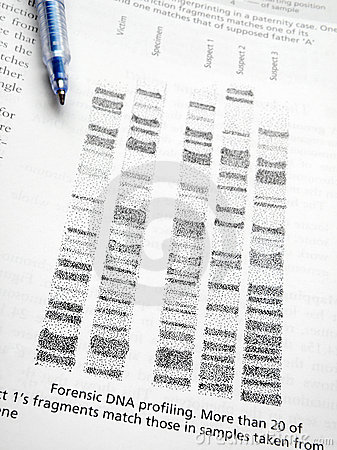 Studying DNA profiling